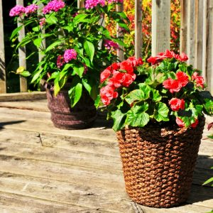 Preparing your home for inspection flower pots in outdoor areas